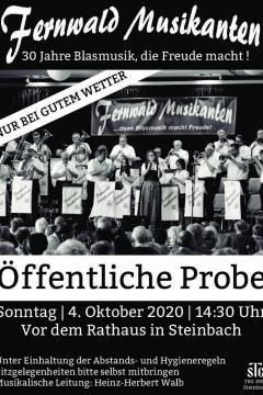 30-jahre-blasmusik-fernwald-musikanten