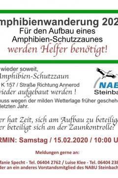 amphibienwanderung-nabu-steinbach