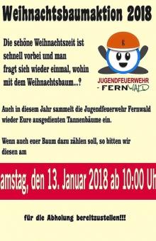 einsammeln-weihnachtsbaeume-2018-steinbach