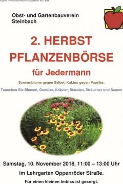 pflanzentauschboerse-steinbach-2018