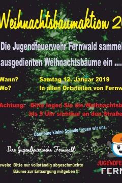 weihnachtsbaumeinsammeln-fernwald-2019